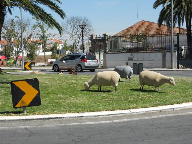 Sheep roundabout in Castro Verde