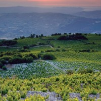 Wine Villages Cyprus