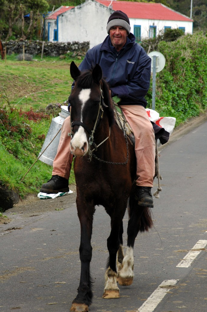 Returning from milking on Sao Jorge - Copyright Heidi Fuller-love 2014