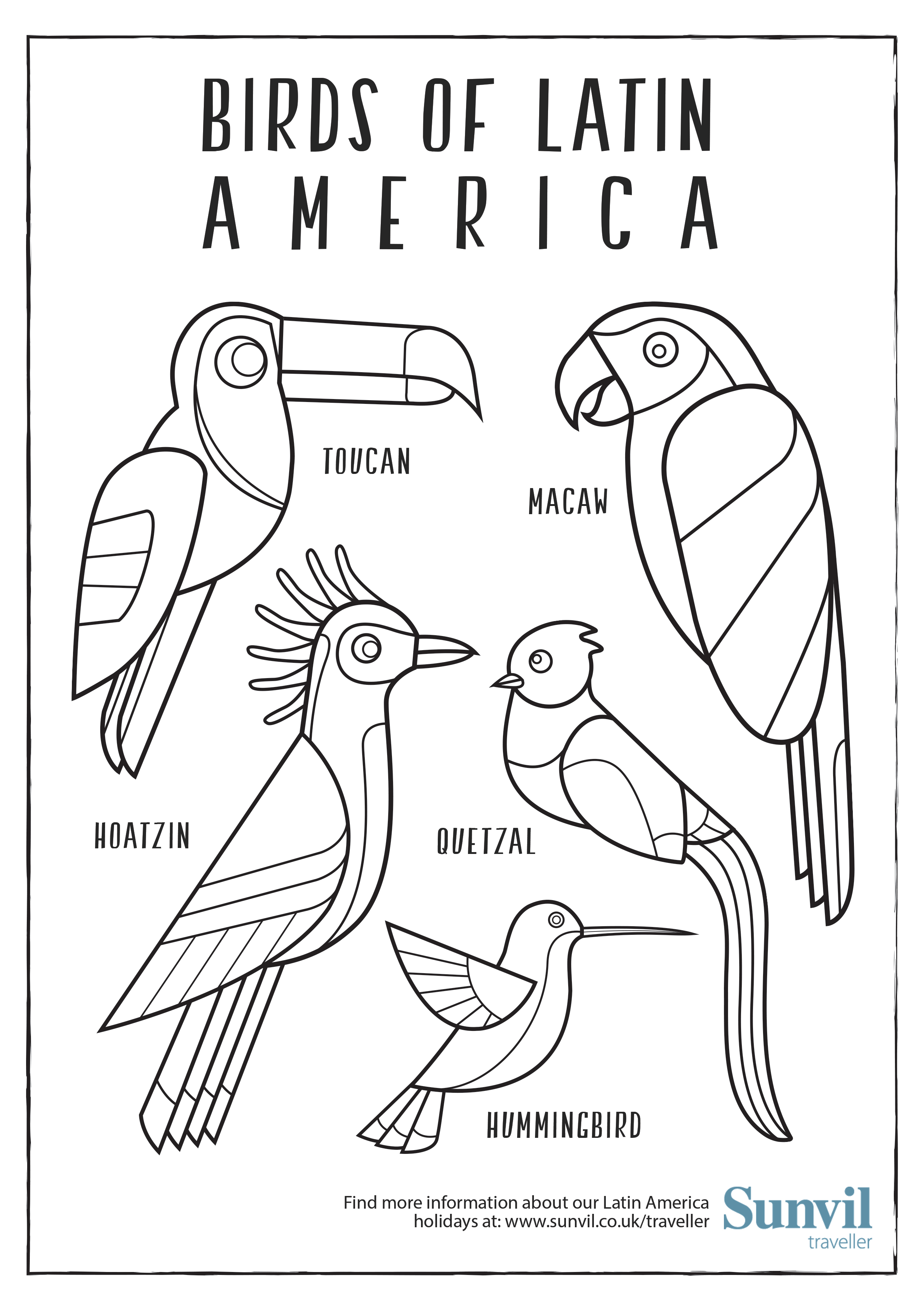 birds of latin america u2013 colouring page