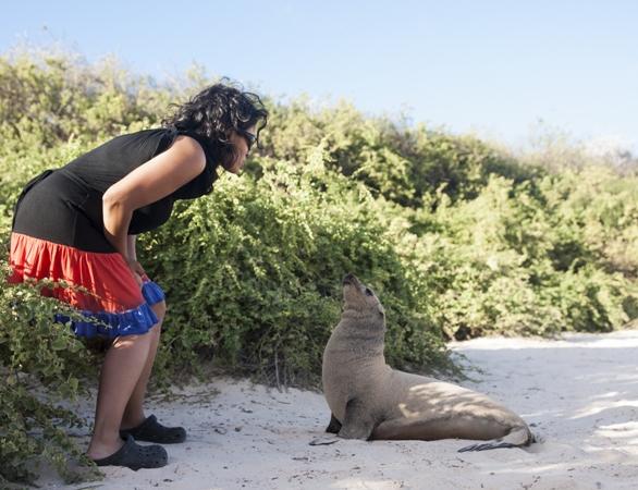 Woman and sea lion approach each other