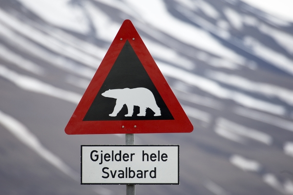 Warning sign polar bears, Svalbard