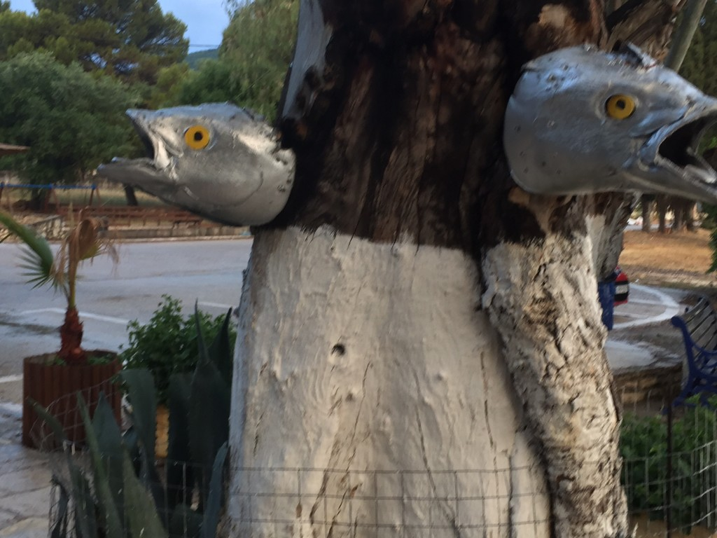Something fishy on the trees!