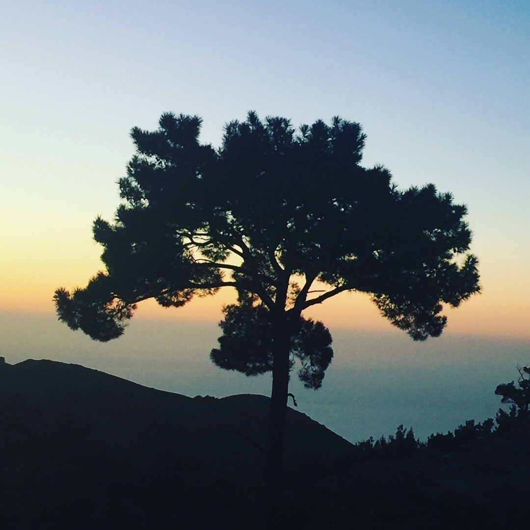 Notes from the field - Samos, Ikaria and Lemnos